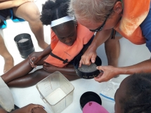 Campers sift through a microplastic found during ocean trawl