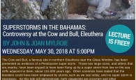WEB---Cow-&-Bull-(3)-(2)