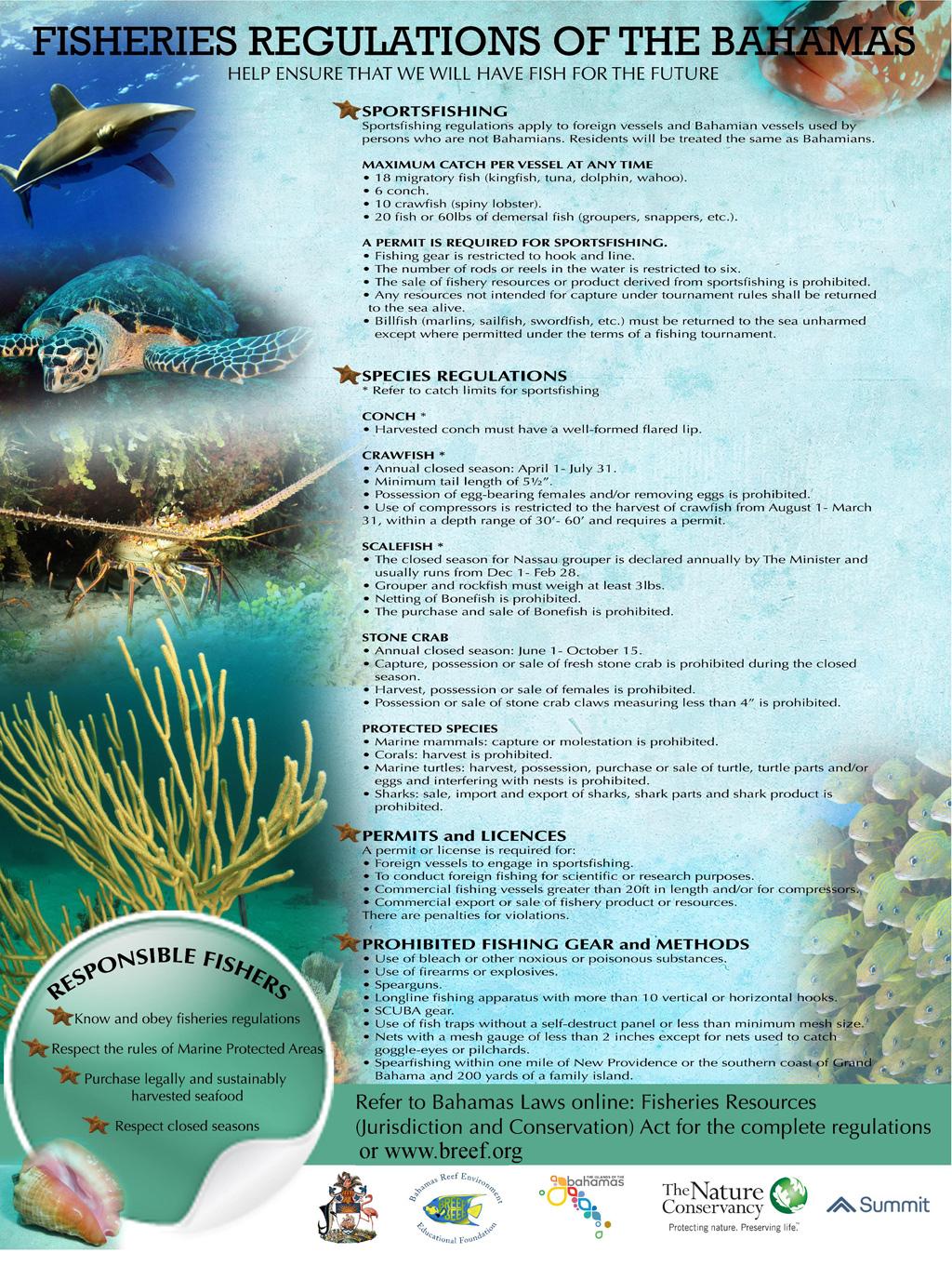 Fisheries-Regulations-Bahamas-Poster