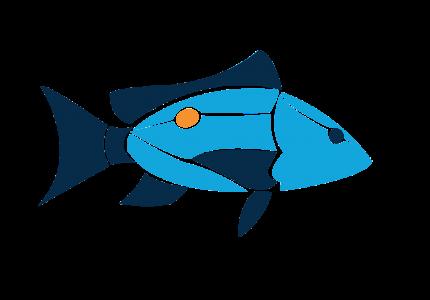 Island School Fish logo
