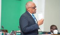 PM - govt to restructure FDIs